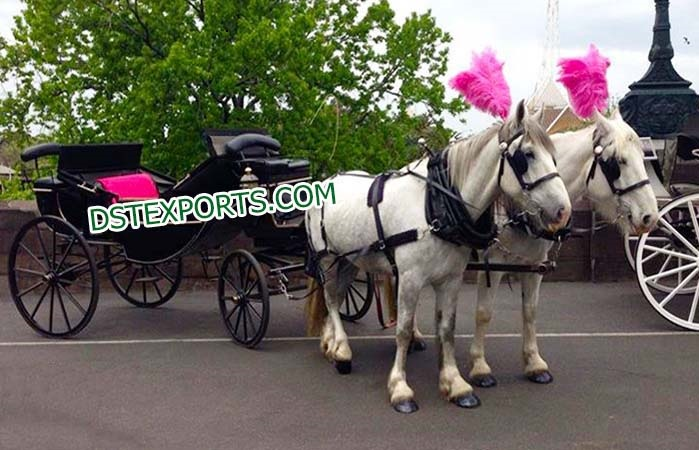 Latest Horse Drawn Buggys Carriages