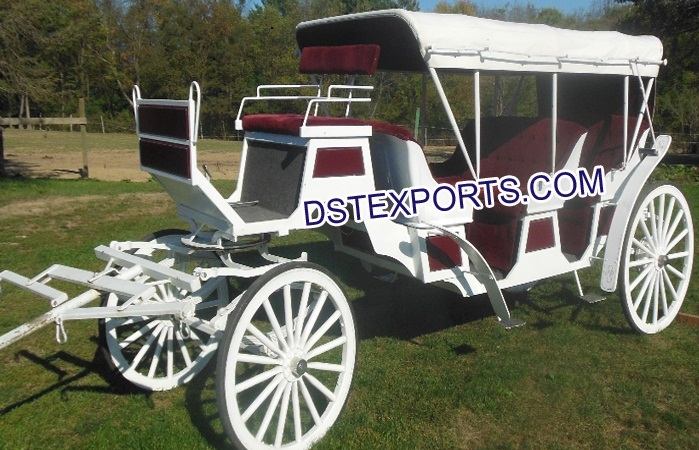 Horse Drawn Carriages For Touring Hotel