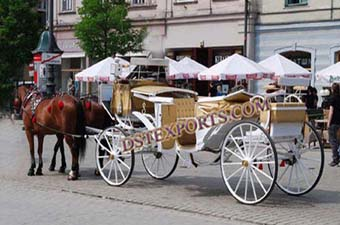 Tourist Horse Drawn Baghi For Sale