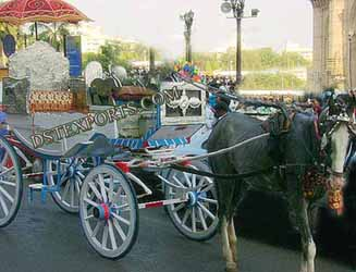 Indian Wedding Horse Drawn Baghi Manufacturer