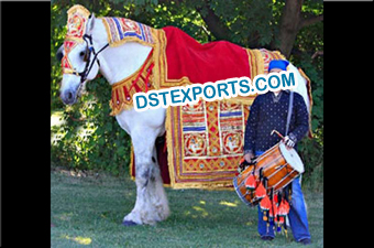 Indian Wedding Barat Howdah Decorations
