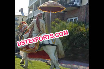 Indian Barat Horse Dress Howdah