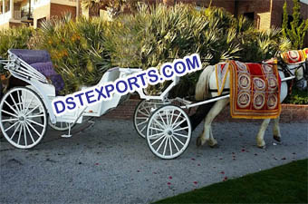 Wedding Horse Baghi Howdah Decor