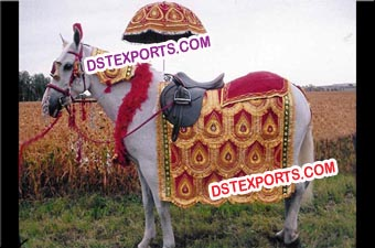 Indian Vivah Decorated Horse Costume