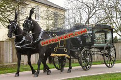 ROYAL BLACK FUNERAL HORSE CARRIAGE