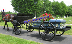 COMMERCIAL FUNERAL HORSE CARRIAGE