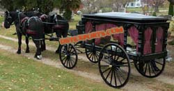 GRAND FUNERAL HORSE CARRIAGE