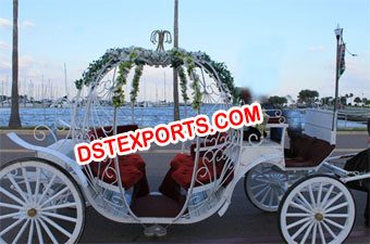 Exclusive White Cinderella Horse Carriage