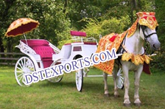 Indian Wedding Horse Carriages