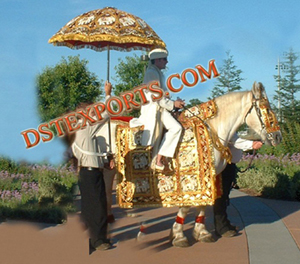 Indian Baraat Horse Costume
