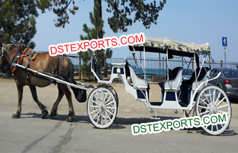 Fabulous Hotel Touring Wedding Family Carriage