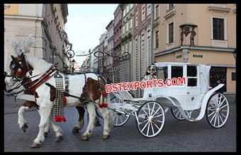 White Elegant Covered Horse Buggy