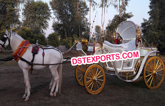 American Royal Horse Drawn Buggy