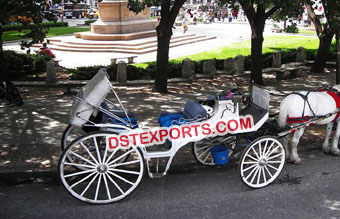 Decorated Indian Wedding Horse Buggy Carriage
