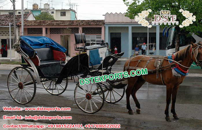 Latest Horse Carriages For Sale