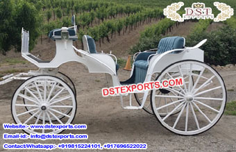 Canadian Wedding Victoria Horse Buggy